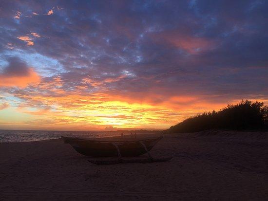 The Oasis Ayurveda Beach Hotel: photo4.jpg