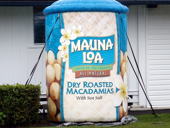 Keaau, Hawái: a large inflatable of a can of nuts