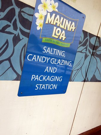 Keaau, HI: salting and glazing station