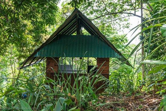 Ka'Kau Jungle Cabinas : Cabin