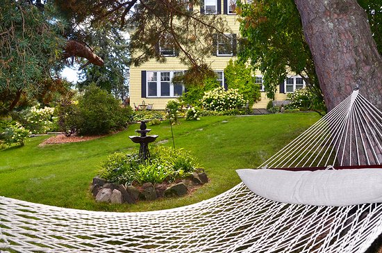 A G Thomson House Bed and Breakfast: Hammock
