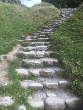 Mount Maunganui Summit Track: Stone Stair Segment