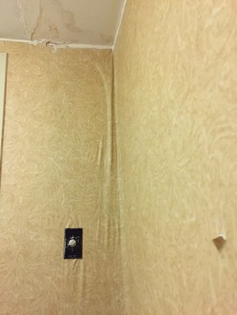 Clarion Inn & Suites At International Drive: Old water damage that should've been fixed.
