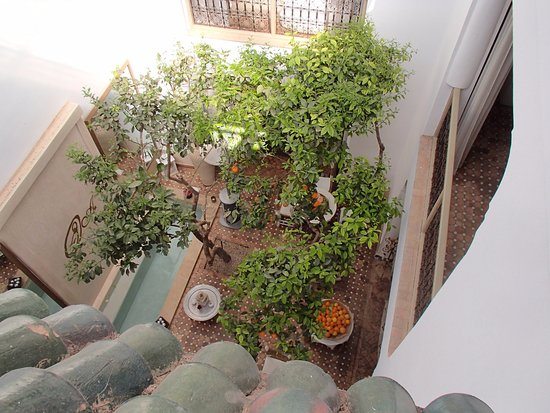 Riad les Orangers d'Alilia Marrakech: The central court yard.