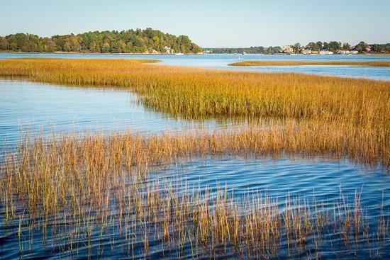 Essex, Массачусетс: Estuary