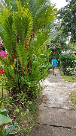 Leijay Resort Photo