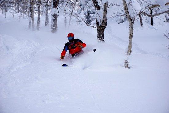 Hidaka-cho, Japan: Skiing Asahidake_1