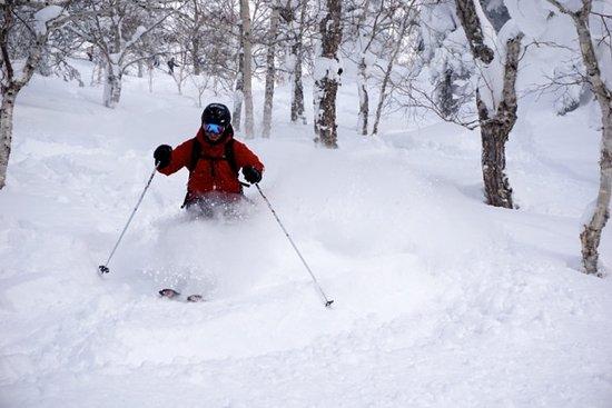 Hidaka-cho, Japan: Skiing Asahidake_2