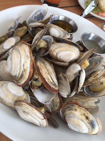 Matunuck Oyster Bar: photo5.jpg