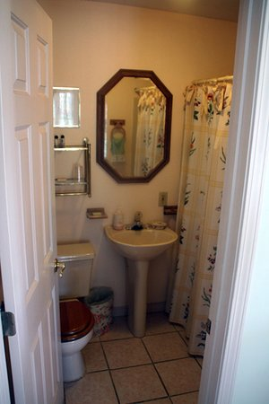 The Five Bells Inn: Room #3 (bathroom photo), main house, overlooking the lake, queen bed, private bath