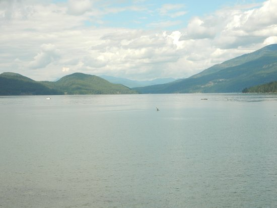 Whitefish, MT: View from the beach