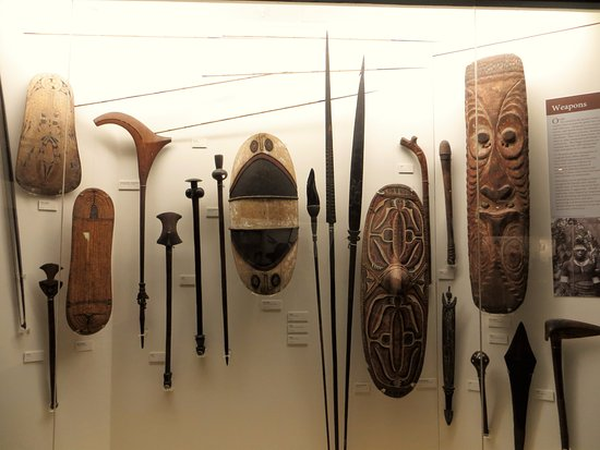 Otago Museum: Museum displays