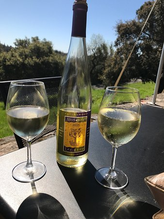 Ravenswood Winery: photo0.jpg