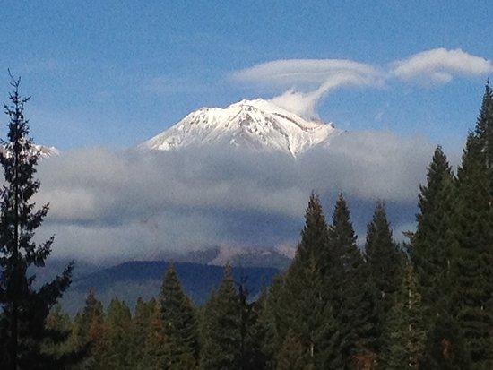 Mount shasta resort kalifornien omd men och for Mt vista cabina e motel