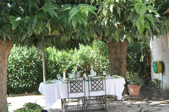 Conques-sur-Orbiel, Francia: Dining out under the Mulberry trees.
