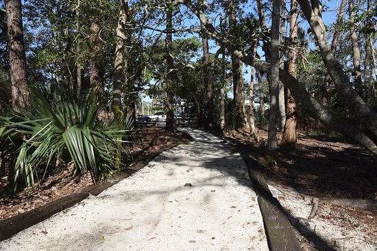 Atlantic Beach, FL: Howell Park - Main Trail to Parking Lot