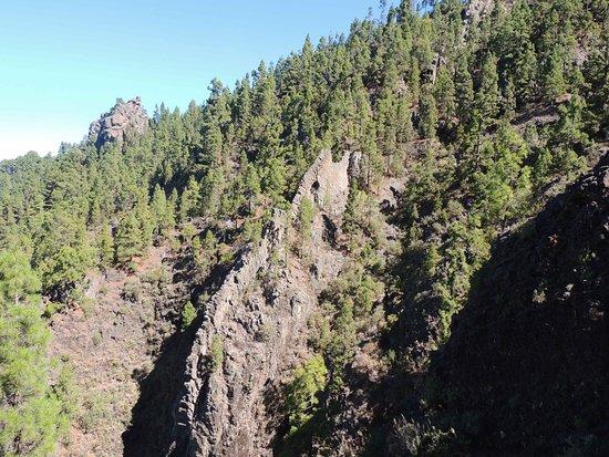 Looks like an elephant rock - Picture of Orotava Valley, Puerto de la Cruz - ...