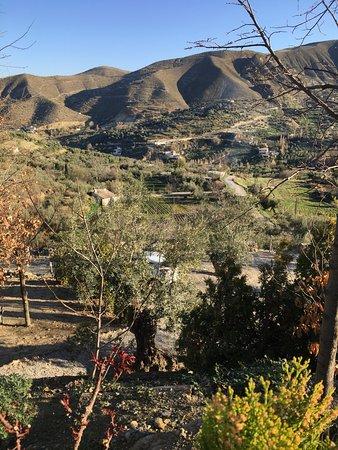 La Almunia del Valle Bild