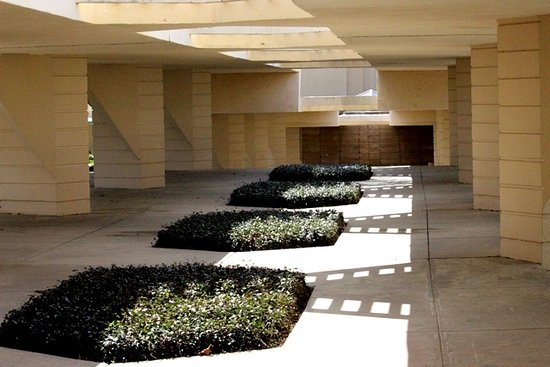 Florida Southern College : Espalanade - its supposed to look like an orange grove