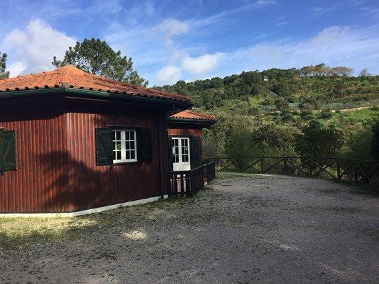Centro de Recuperação do Lobo Ibérico: photo3.jpg