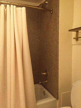 River Street Inn: Ripped, towels with holes. 
