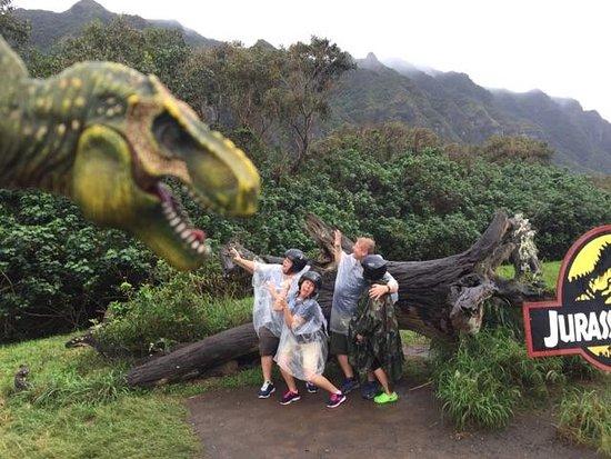 Kaneohe, Havaí: T-Rex bait!