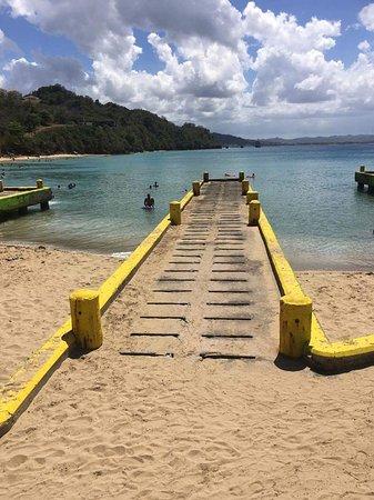 Crashboat Beach: received_10212847352526960_large.jpg