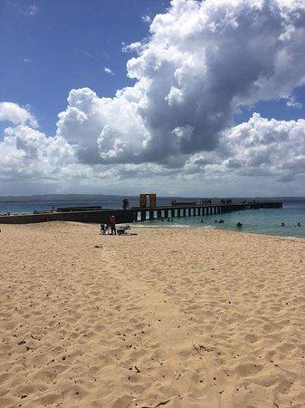 Crashboat Beach: received_10212847351766941_large.jpg