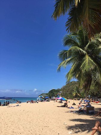 Crashboat Beach: received_10212847351126925_large.jpg