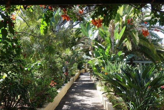 Jardin de Orquideas de Sitio Litre