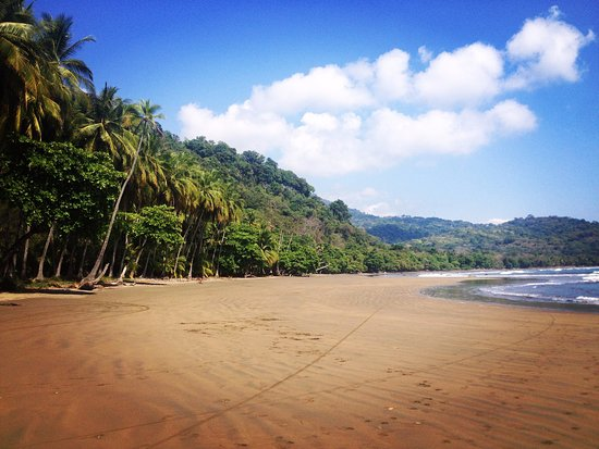 Costa Paraiso: Dominicalito Beach close to your room
