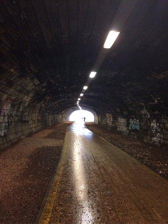 Water of Leith Walkway: photo1.jpg