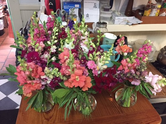 Greyfield Inn: Flowers from their garden