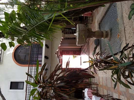 Hotel Casa del Balam: 20170308_111023_large.jpg