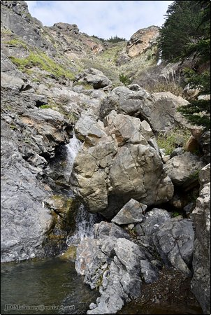 Ragged Point Inn and Resort: Hike down to view the waterfall