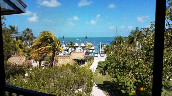 Marathon Key Beach Club: view from our screened-in porch