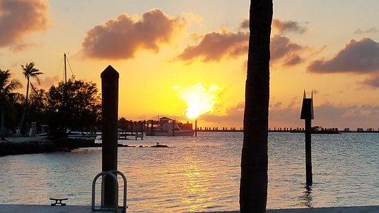 Фотография Marathon Key Beach Club