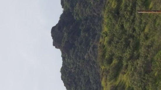 Agoura Hills, CA: Lady Face.