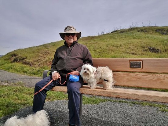 Coyote Hills Regional Park: Bench to enjoy the views.