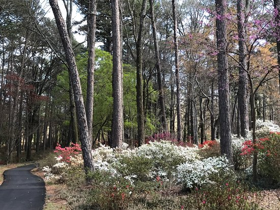 Pine Mountain, GA: Beautiful gardens, trails and bike path.