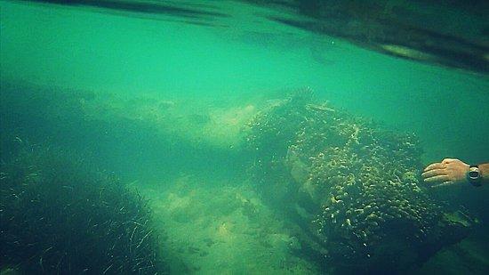 Five Cays Settlement, โพรวิเดนซิเอลส์: photo1.jpg