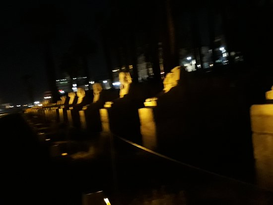 Avenue of Sphinxes: Avenue by night