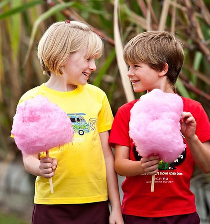 Sarina Sugar Shed: Enjoy free fairy floss with every tour