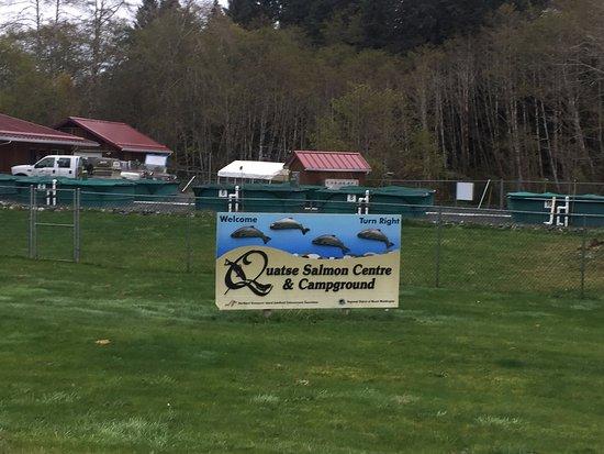 Quatse Salmon Stewardship Centre  8400 Byng Road, Port Hardy, British Columbia