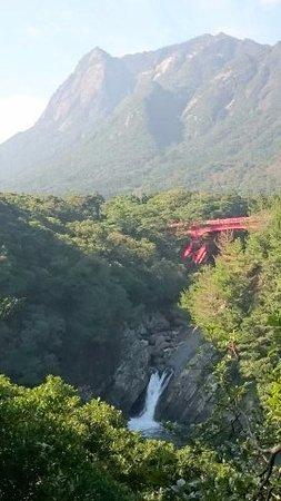 Toroki Falls : トローキの滝1