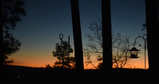 Whispering Pines Bed and Breakfast : photo0.jpg
