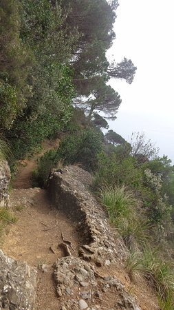 Parco Naturale Regionale di Portofino: le chemin
