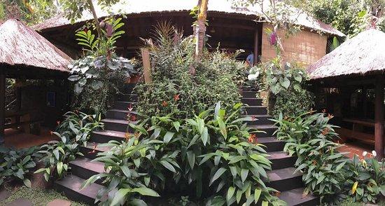 Segara Windhu Coffee Plantations