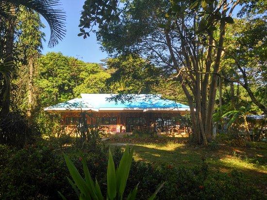 DabDab Resort Photo