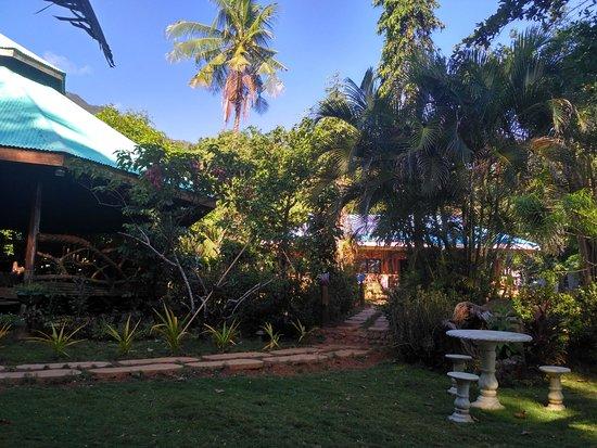 DabDab Resort : Территория